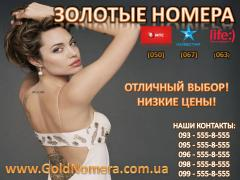 Start packs, contracts KyivStar, Djuice Golden numbers MTS, Kyivstar life