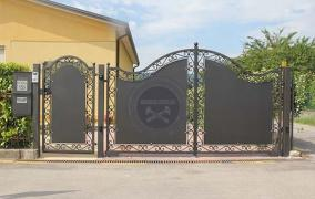 Ворота і хвіртки з профнастилу з елементами ковки